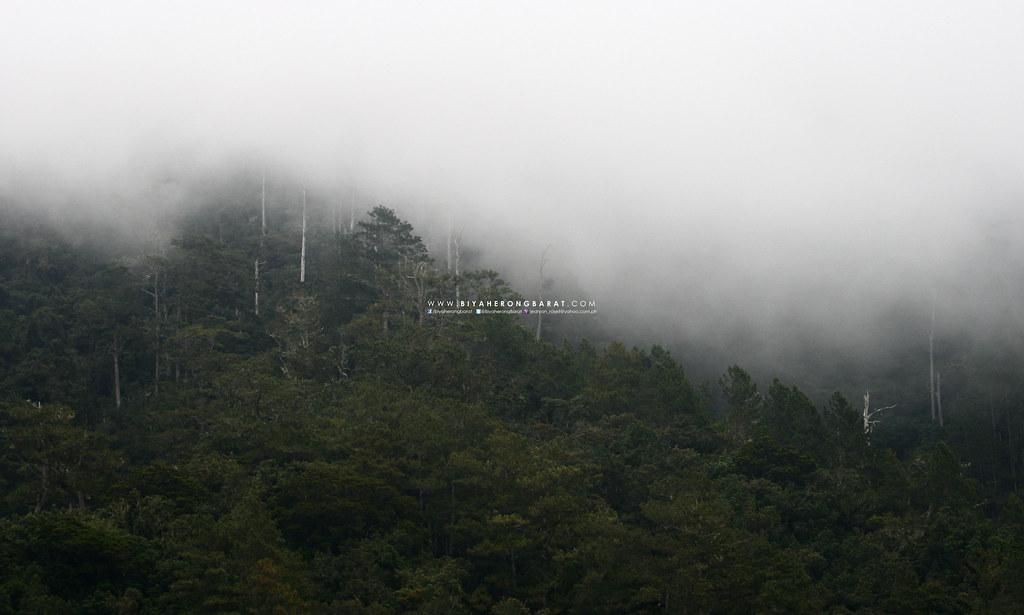 Mount Amuyao Traverse Barlig Mountainn Province Ifugao Batad