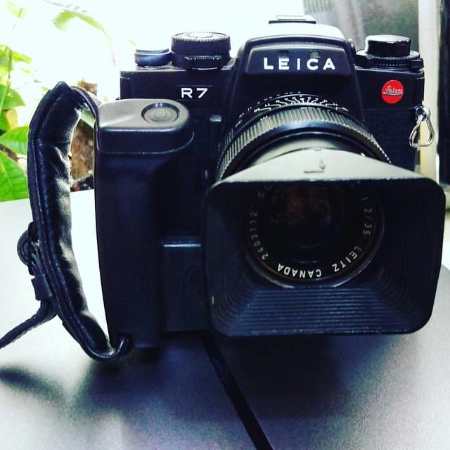 Leica R 35mm f2 E48 試玩