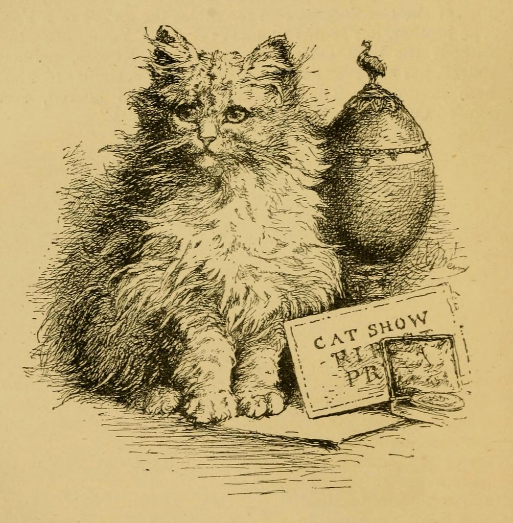 "Miss Mary Gresham's Persian Kitten ""Lambkin"". An illustration from Harrison Weir's book Our Cats and All About Them"