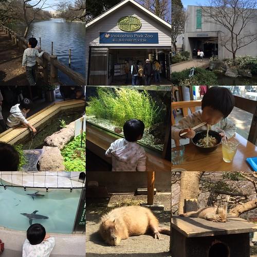 井の頭自然文化園 2016.3.20