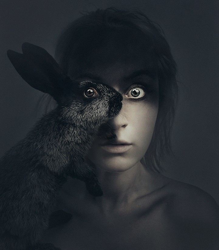 Animal Human Eye Illusions