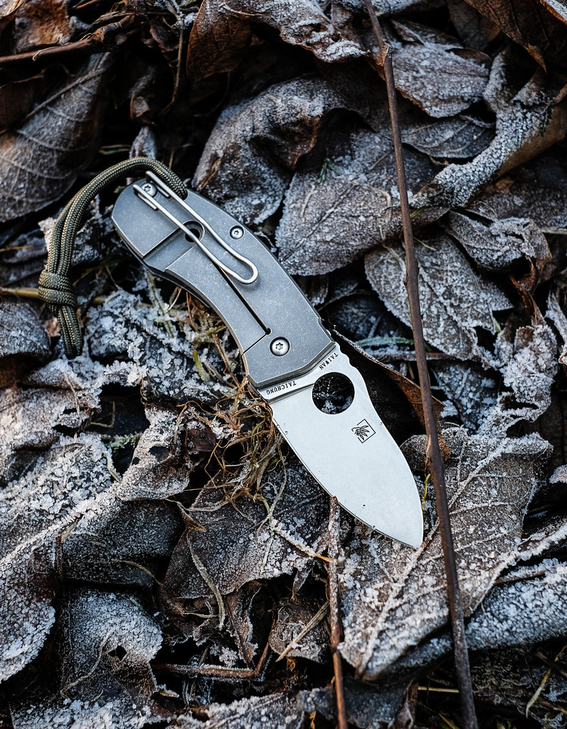 Review: Spyderco Techno – Big Little Knife 25114053250_2dc97648c2_b