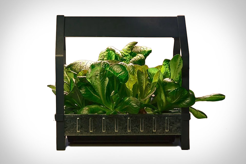 ikea indoor garden ikea indoor. Black Bedroom Furniture Sets. Home Design Ideas