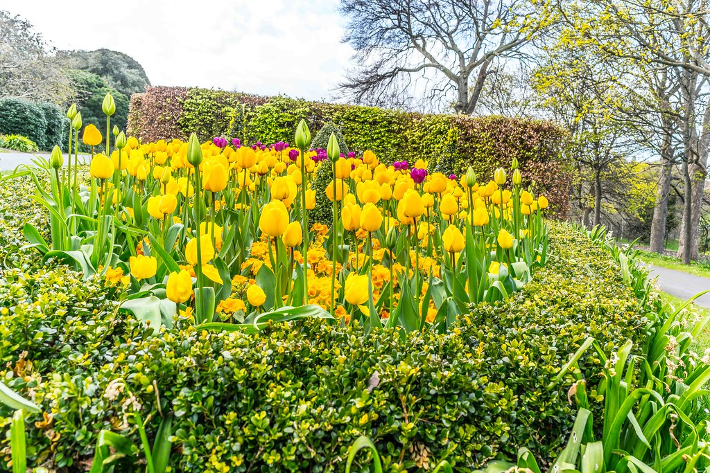 The Victorian Peoples Flower Gardens Comprise Of An Area 9 Hectares 22 Acres