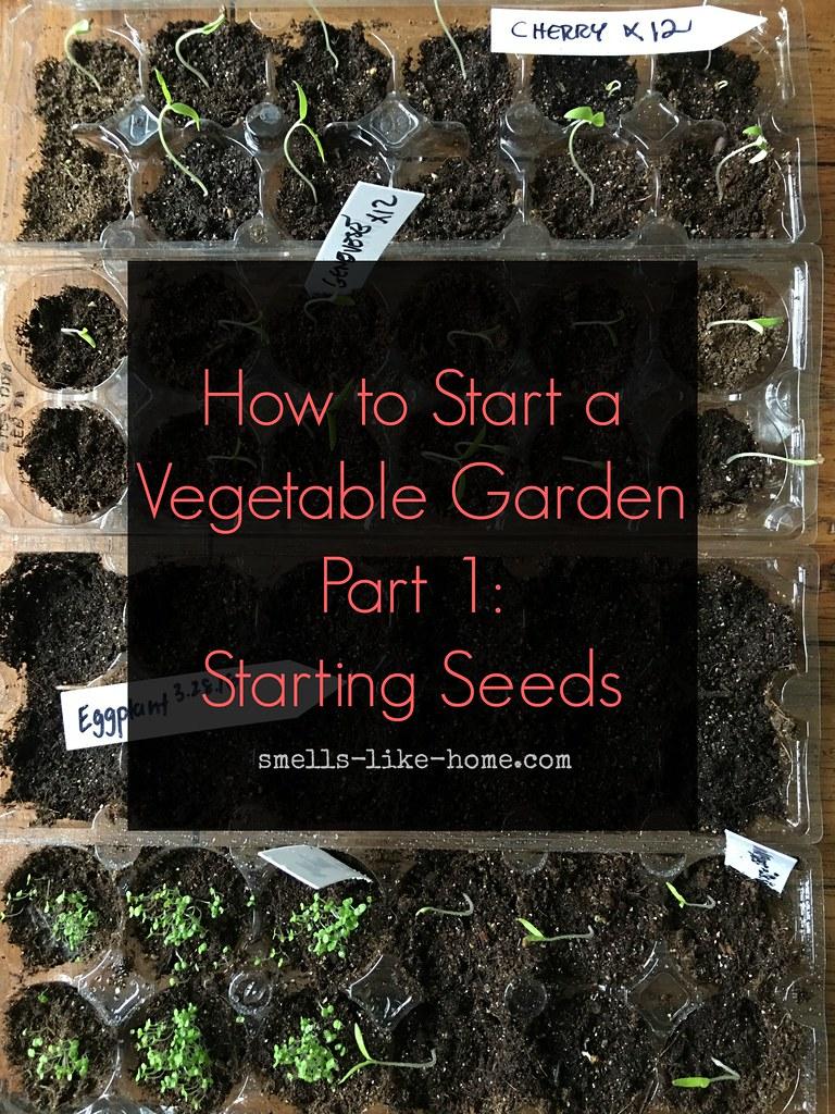 How To Start A Vegetable Garden Tara Flickr