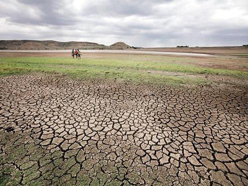 मध्य प्रदेश में बढ़ता जल संकट