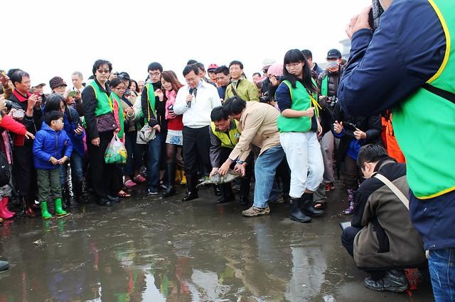 綠蠵龜安安在眾人祝福下重返大海。攝影:廖靜蕙