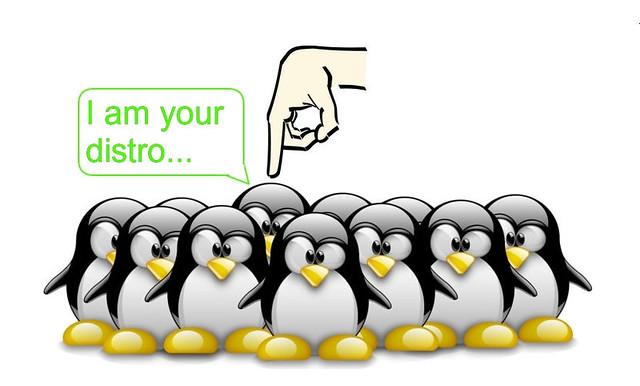 linux-distro.jpg