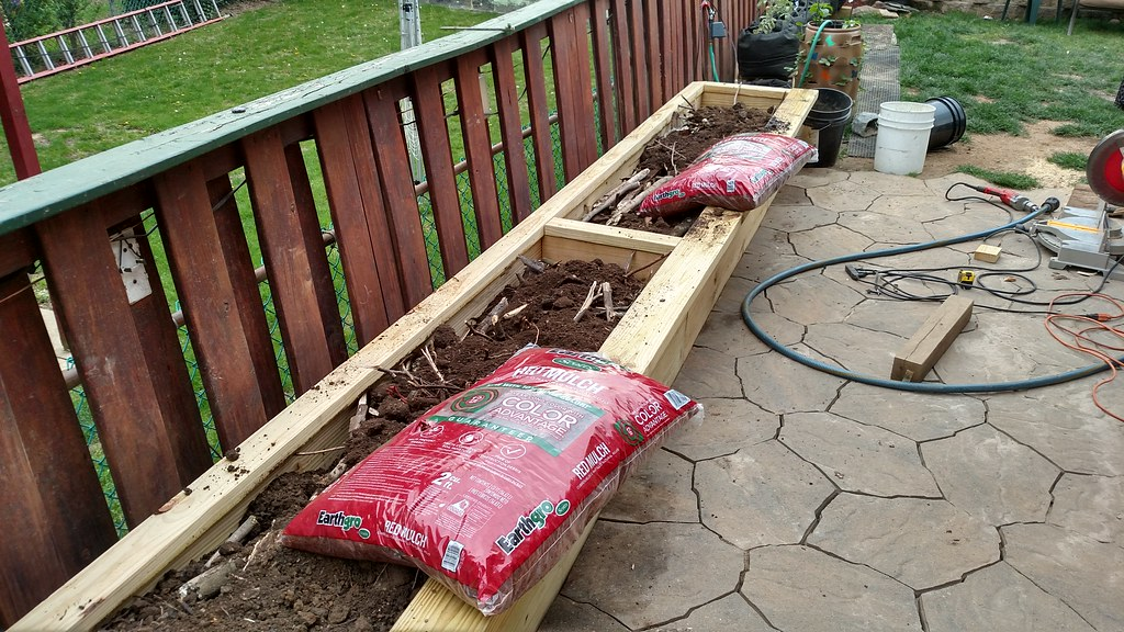 My first Hugelkultur Raised Bed 26609755846_8aeeaf9bd0_b