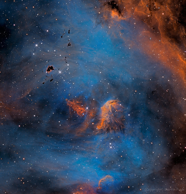 VCSE - Mai kép - Futó Csirke-köd - Martin Pugh