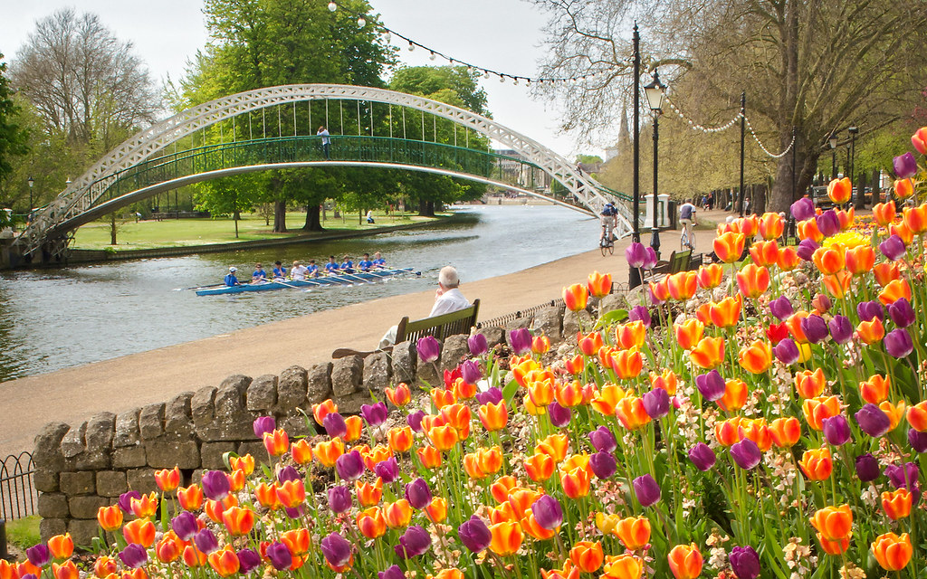 Colorful Tulips On River Ouse Embankment Bedford Uk Flickr