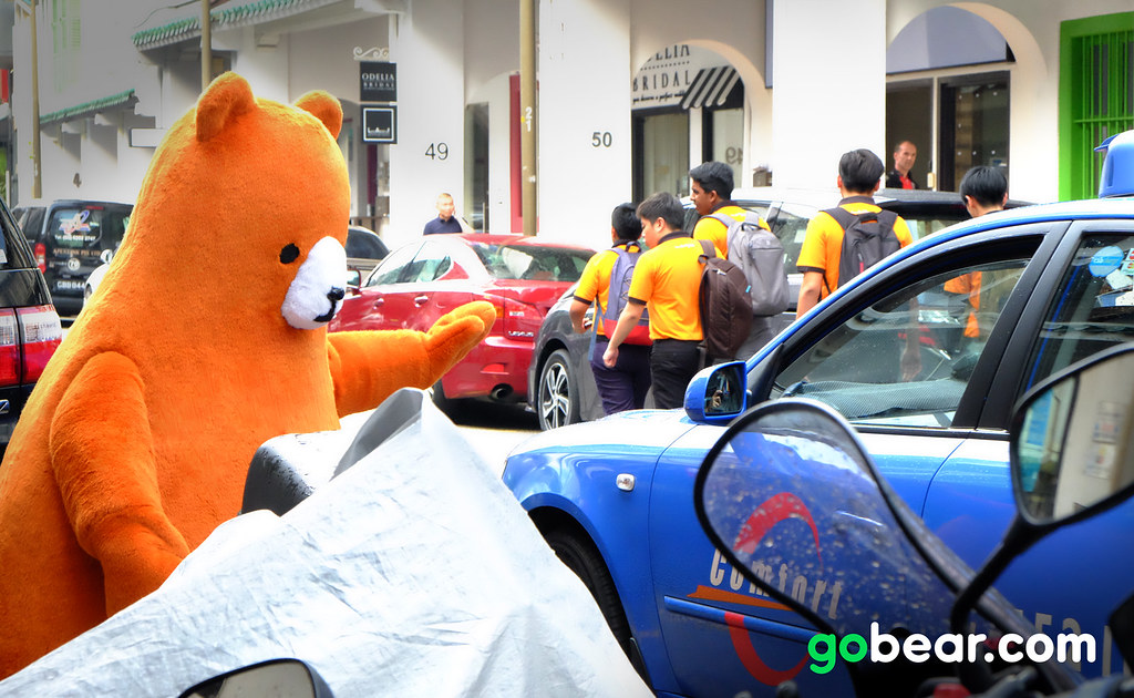 Spot this Bear to win a pair of tickets to Gold Coast, Australia!
