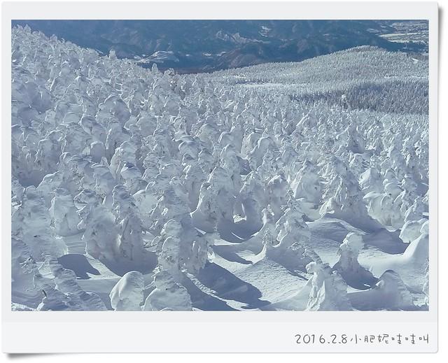 【日本藏王溫泉滑雪】晴天率很低的藏王樹冰