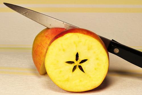 In meinem kleinen Apfel, da sieht es lustig aus: es sind darin fünf Stübchen, grad' wie in einem Haus Foto Brigitte Stolle 2016
