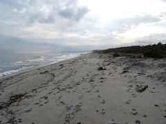 Retour au parking sur la plage de Pinia