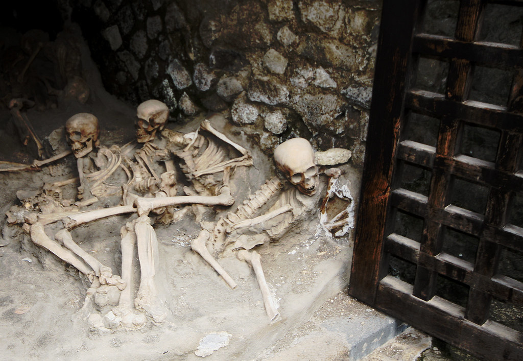 Skeletons In The Boat Houses Herculaneum Located In