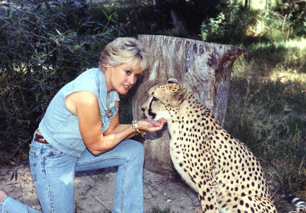 Tippi Hedren President Of The Roar Foundation With Cheet
