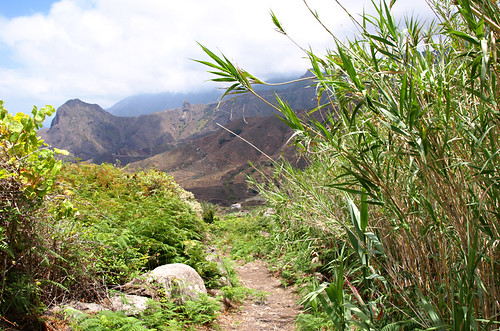 Camino de las Vueltas, Anaga, Tenerife