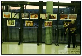 Exposició al Centre Cívic de Bigues