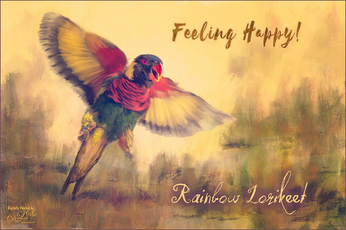Painted image of a Rainbow Lorikeet bird