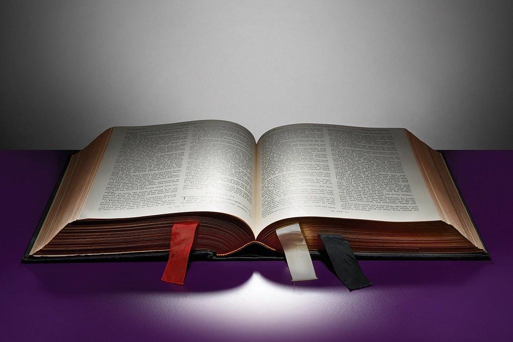 Hãy Đón Nhận Lời Đã Gieo Trong Chúng Ta