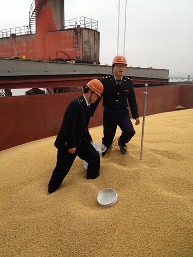 People's Republic of China General Administration of Quality Supervision, Inspection and Quarantine (AQSIQ) officials taking samples of U.S. soybeans at the Port of Dalian