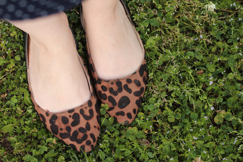 Pointed Leopard Print Flats in the Clover