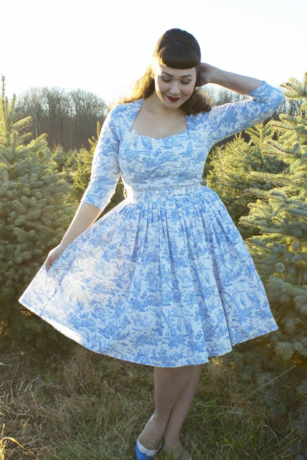 toile vintage dress
