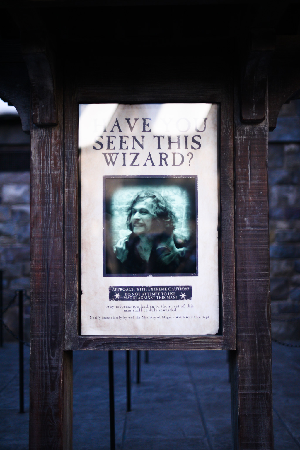 Wizarding World of Harry Potter 19