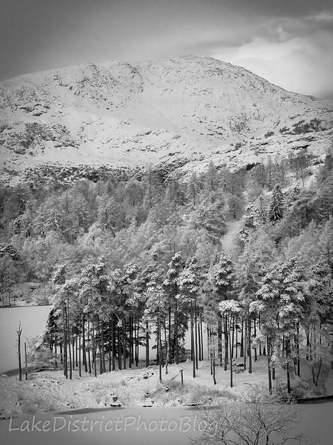 英国 イギリス 湖水地方 風景 自然 ターン・ハウズ湖 冬 雪 冬山