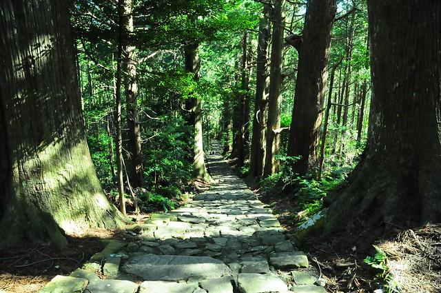 日本,通往那智大社的大門坂。(攝影:陳孟薇)