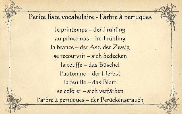 Pflanzen-Quiz Rätsel französisch deutsch Au printemps mes branches se recouvrent de touffes blanches.A l'automne mes feuilles ovales se colorent d'un rouge intense.Qui suis-je? Im Frühling bedecken sich meine Zweige mit weißen Büscheln. Im Herbst verfärben sich meine ovalen Blätter in ein intensives Rot.Wer bin ich? Arbre à perruques - Perückenstrauch (Cotinus Coggygria) -  Der Perückenstrauch, lateinisch Cotinus, lieferte laut Plinius schon in der Antike einen dem Purpur vergleichbaren Farbstoff. Petite liste vocabulaire