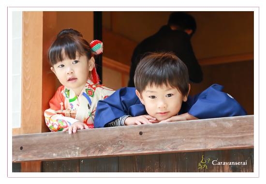 七五三写真,豊田市美術館・茶室(愛知県豊田市),ロケーション撮影,出張撮影,着物,和装,男の子,女の子,全データ