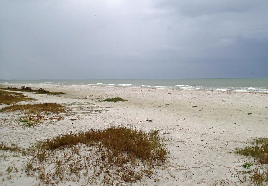 Pine Island Beach Ca