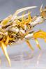 [Comentários] - Saint Cloth Myth EX - Soul of Gold Mascara da Morte  24098075213_4294b59e7d_t