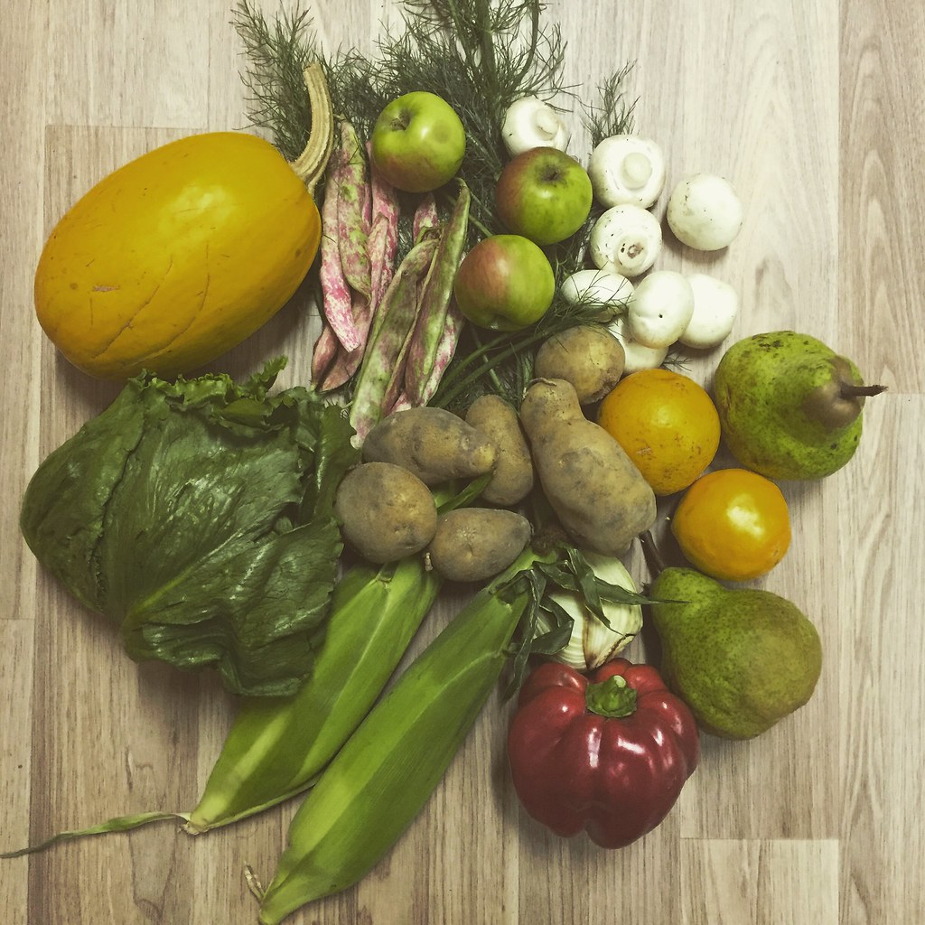 the selection of vegetables we purchased from the grow lightly food hub in korumburra