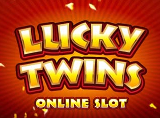 Online Lucky Twins Slots Review