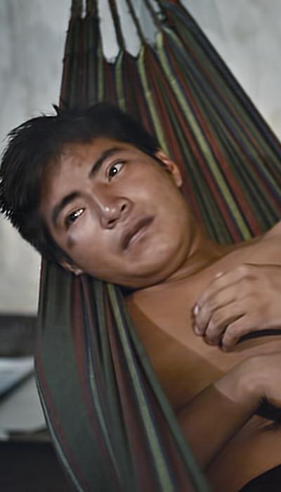 Imagen del documental La selva inflada
