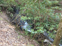 Small Sliding Falls