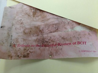 A tribute to the beautiful women at BCIT!