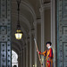 St Peter's Basilica Guard