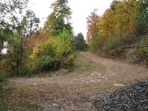 Photo of trail at Dan's Mountain Wildlife Management Area