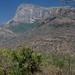 Indira Ghandi National Park