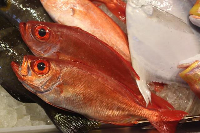 到市場選魚,莫忘看、按、聞。攝影:廖靜蕙