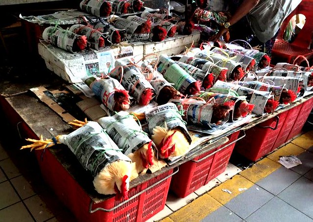 Newspaper-wrapped chickens