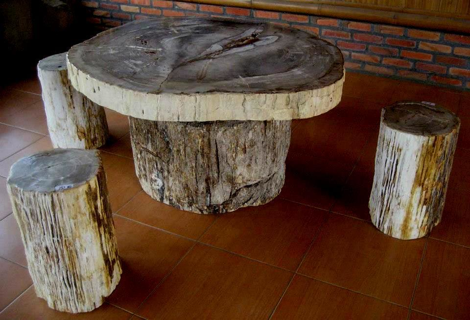Petrified Wood Table Top Kitchen Table
