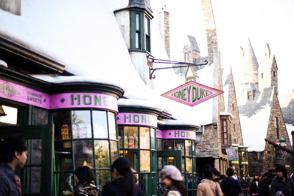 Wizarding World of Harry Potter 20