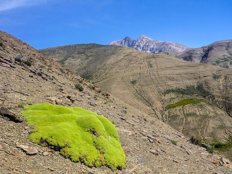 Chañi Chico y Cerro Piramide