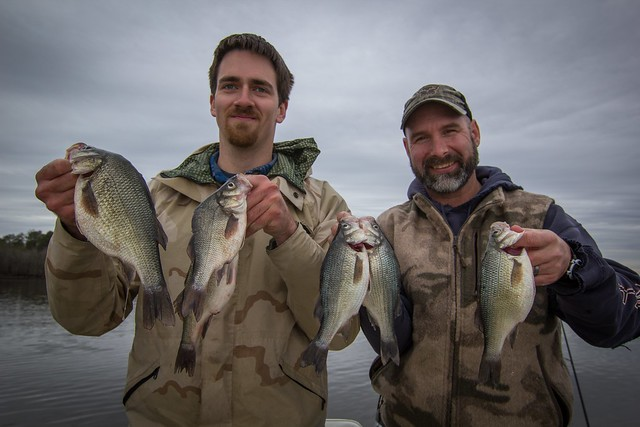 Jim Thompson and Harold Harbold were fishing on the upper Nanticoke River recently for white perch and got into some nice size ones.