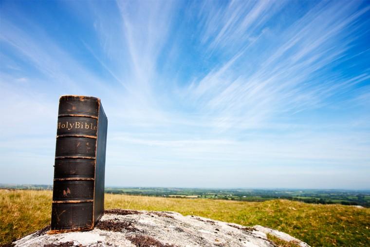 Kinh Thánh Nhập Môn: Ngôn ...